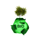 Recycle logo with tree Royalty Free Stock Image