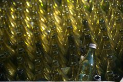 Recycle me!. Empty beer bottles ready to be recycled Royalty Free Stock Photos