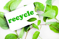 Recycle message on leaves Royalty Free Stock Photography