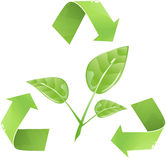 Recycle For Nature Royalty Free Stock Photography