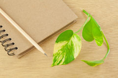 Recycle notebook and wooden pencil Stock Image