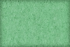 Recycle Paper Light Kelly Green Extra Coarse Grain Vignette Grunge Texture Sample Stock Images