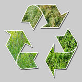 Recycle sign with grass Stock Photo