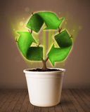 Recycle sign growing out of flowerpot Royalty Free Stock Image