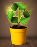 Recycle sign growing out of flowerpot Royalty Free Stock Photos