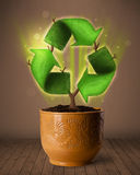 Recycle sign growing out of flowerpot Stock Photography