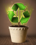 Recycle sign growing out of flowerpot Stock Photos