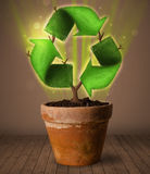Recycle sign growing out of flowerpot Royalty Free Stock Photography