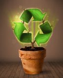 Recycle sign growing out of flowerpot Royalty Free Stock Photo