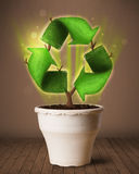 Recycle sign growing out of flowerpot Stock Image
