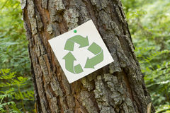 Recycle sign on a tree Royalty Free Stock Photos