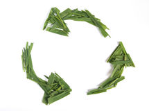 Recycle symbol. Made of grass Royalty Free Stock Photo