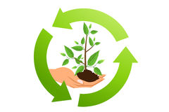 Recycle symbol. With green tree as the green earth Stock Images