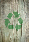 Recycle symbol. Printed on a tree Royalty Free Stock Photo