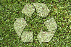 Recycle symbol. On grass texture, environmental concept Stock Photography