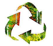 Recycle Symbol with Forest of Autumn Trees Royalty Free Stock Photos