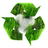 Recycle Symbol with Forest of Pine Trees Stock Photos