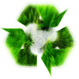 Recycle Symbol with Forest of Pine Trees Zoomed Stock Photography