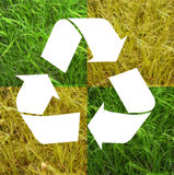 Recycle symbol grass. Am image showing grass in different shades of green over three recycle white arrows symbol. Foe the concept of recycle and save the earth stock illustration