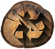 Recycle Symbol on Tree Trunk Royalty Free Stock Photos