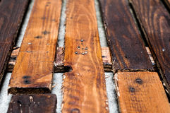 Grounge wood Royalty Free Stock Images