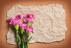 Recycle wrinkle paper with pink canation flower Royalty Free Stock Images