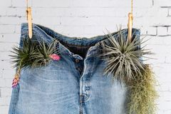 Recycle your Denim jeans concept close-up royalty free stock photography
