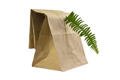 Recycled Brown Paper Bag Royalty Free Stock Photo