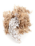 Recycled carton packaging material Stock Photography