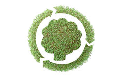 Recycled paper. Leafy tree silhouette surrounded by three-arrow symbol superimposed on green plant - recycled paper concept royalty free illustration