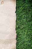 Recycled paper on grass Stock Images