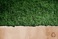 Recycled paper on grass. Royalty Free Stock Photography