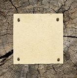 Recycled paper pinned to tree Royalty Free Stock Photo