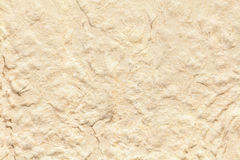 Recycled Paper Pulp Surface Texture Stock Image