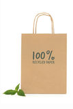 Recycled Paper Shopping  Bag Royalty Free Stock Photography