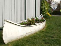 Recycled, reused canoe as a flower bed. Recycled, white canoe reused as a flower bed and garden royalty free stock photography