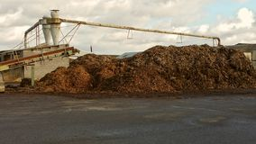 Recycled wood. Industrial plant recycling tree trunks with pile of pulped wood chippings Stock Photo