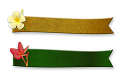 Recycled wood two long curved. Adorned with frangipani flowers on white Stock Photo