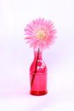 Recycleer fles voor milieu Stock Foto's