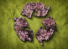 Recycleer Pictogram Royalty-vrije Stock Fotografie