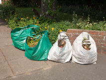 Recycling bags outside in front of house stock photos