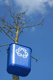 Recycling bin on tree. Recycle and save the earth and trees Royalty Free Stock Photo