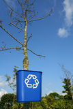 Recycling bin on tree. Recycle and save the earth and trees Royalty Free Stock Photos