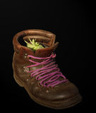 Recycling boots. Recycled boots with a pot of aloe Stock Photo
