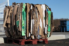 Recycling Carboard Waste Royalty Free Stock Images