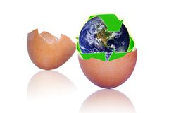 Recycling Eggshells to Protect Planet Earth stock photos