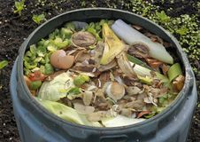 Kitchen waste Royalty Free Stock Images