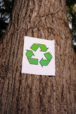 Recycling sign on the trunk of a tree Stock Image