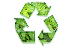 Recycling symbol Royalty Free Stock Image