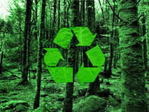 Recycling symbol. On forest background Royalty Free Stock Photos